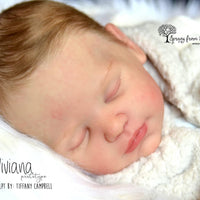 Viviana by Tiffany Campbell - truborns