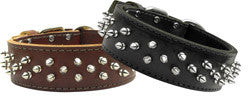 Leather Brutus Dog Collar