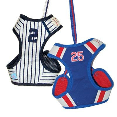 EasyGo Baseball Harness