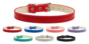 "10mm Omaha Plain 3/8"" Puppy Collar"