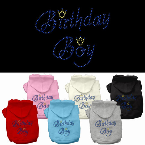Birthday Boy Rhinestone Pet Hoodie