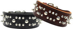 Leather Rodeo Dog Collar