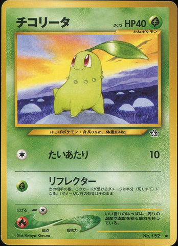 Chikorita - Common