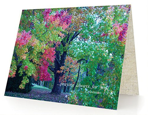Praying for You Always - Package of 10 Cards and 10 Envelopes