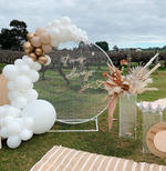 White Mesh Backdrop and Balloon Package