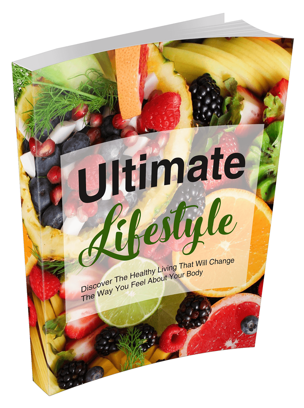 eBook - Ultimate Lifestyle - Reseller Rights Inclusive