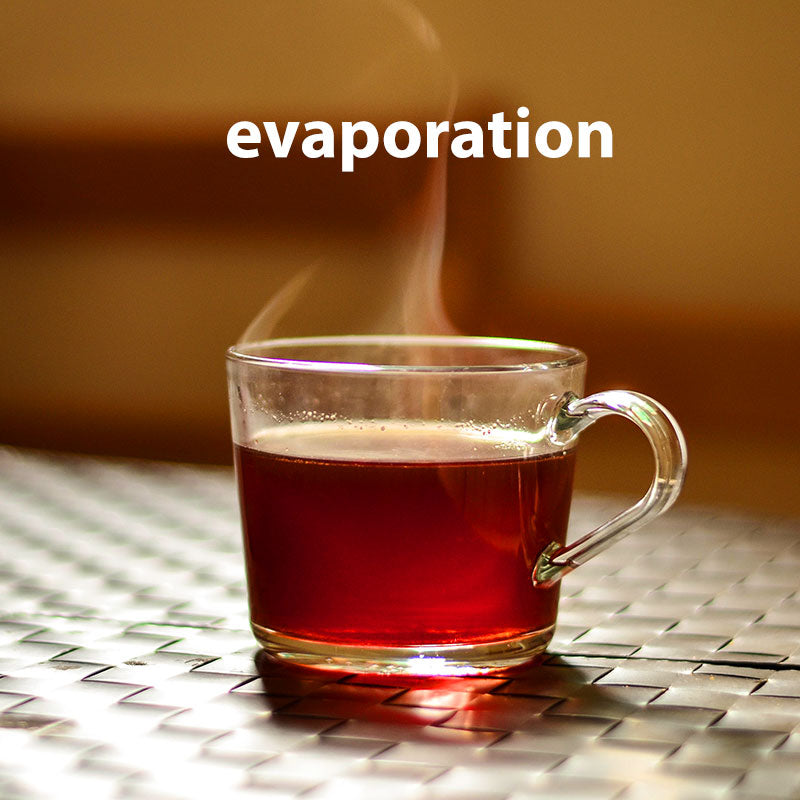 Tea steaming (evaporation)