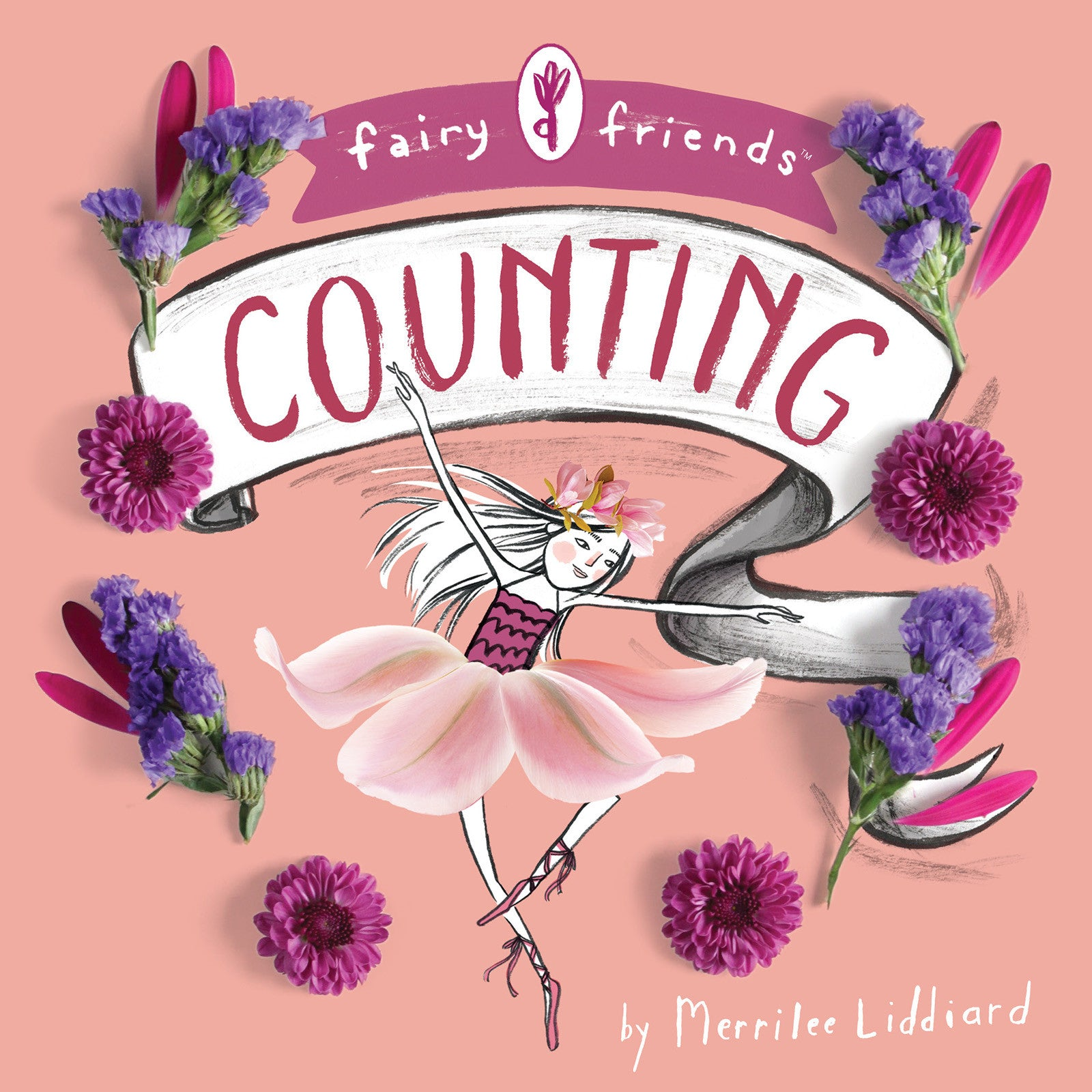 fairy friends counting cover