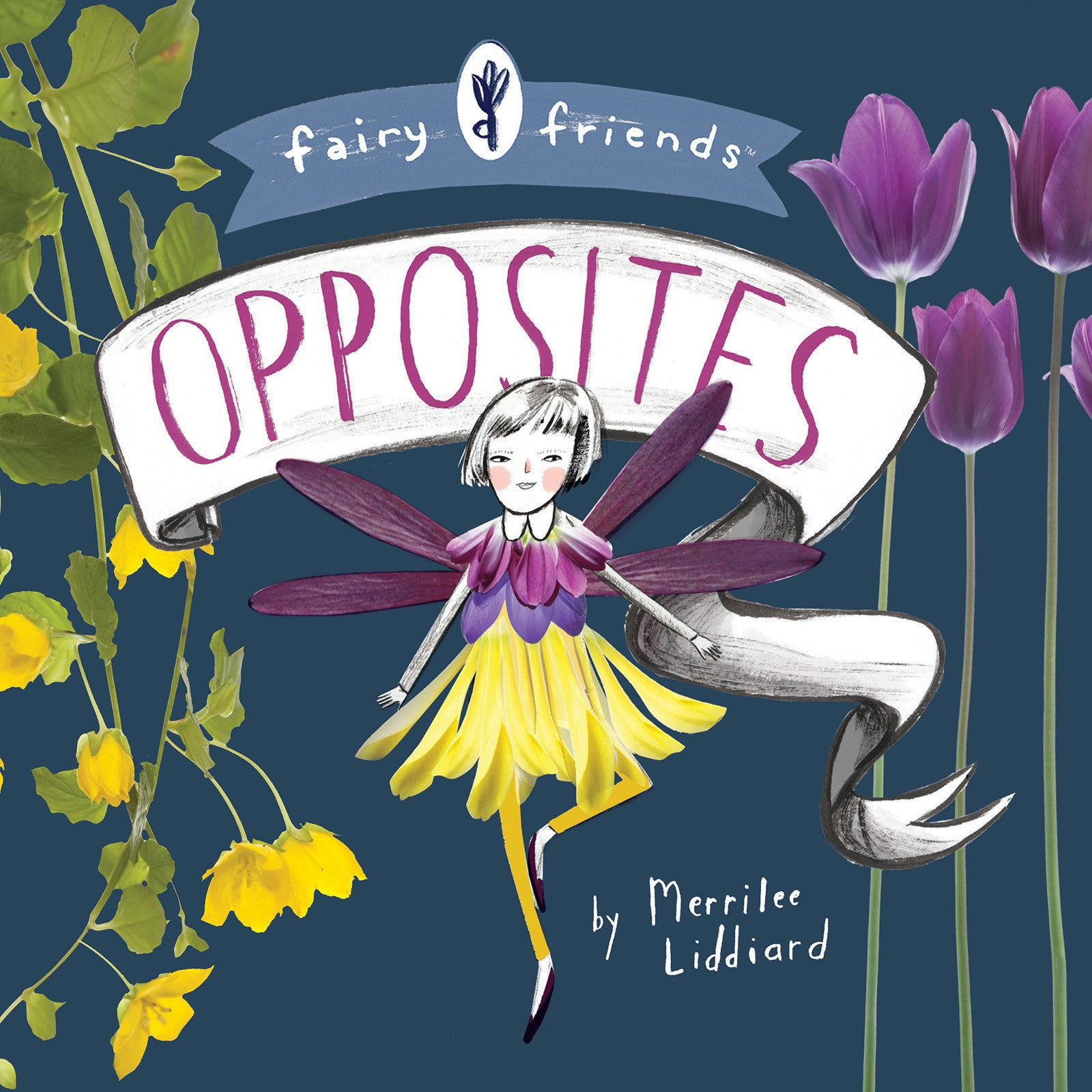 BabyLit Fairy Friends: Opposites cover