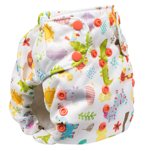 Smart Bottom Dream Diaper
