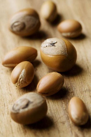 argan oil nut