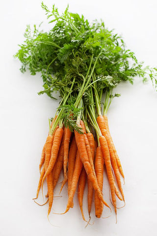 carrots collagen photography
