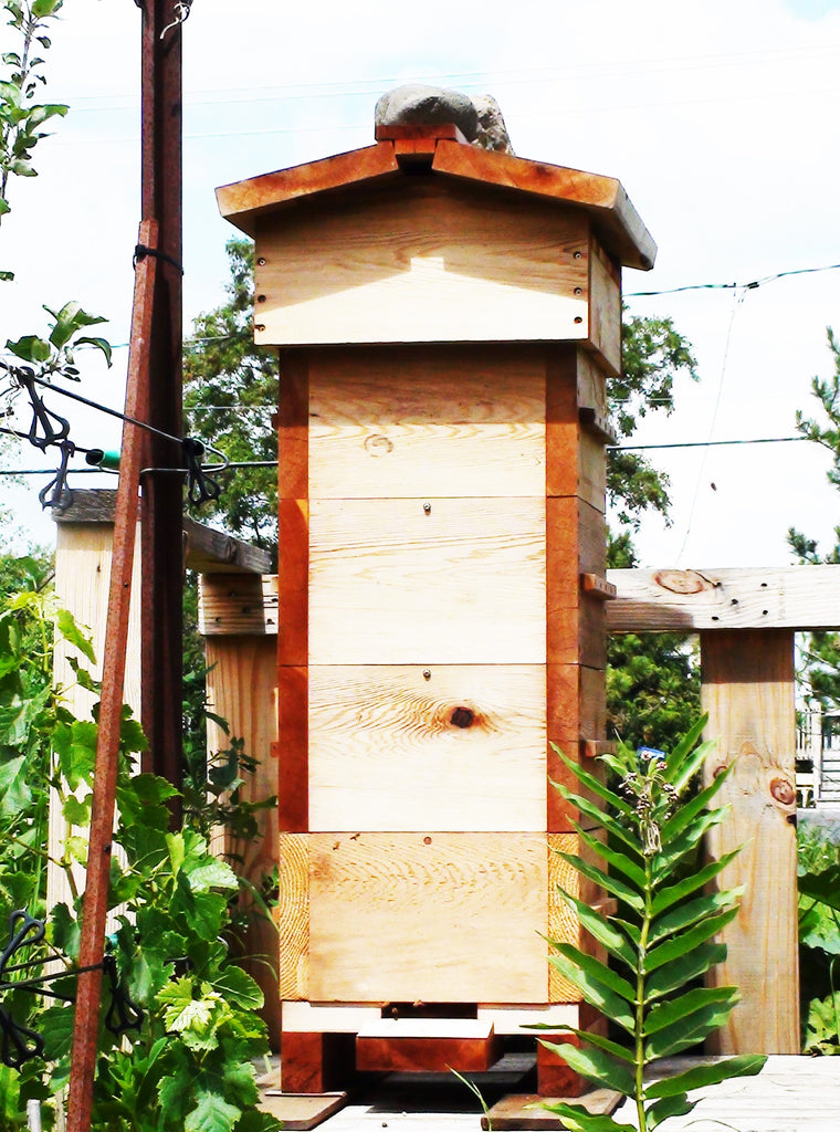 Warré hive and combs movability
