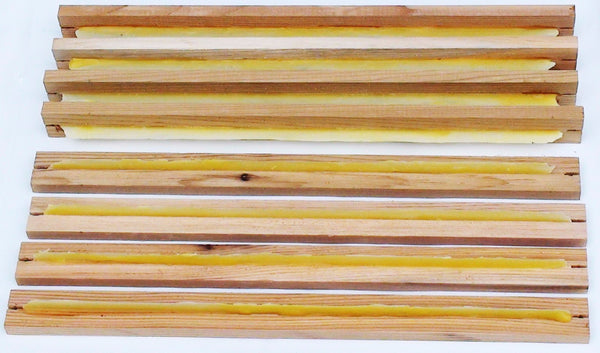 Warré Hive Top-bars with Wax Starter-strips - Copyrights RebelBees 2016