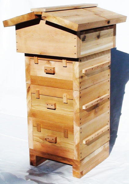 Warré Complete Hive With Windows / Ruche Complète Vitrée