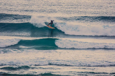 Surf Trips with Mango Surfing