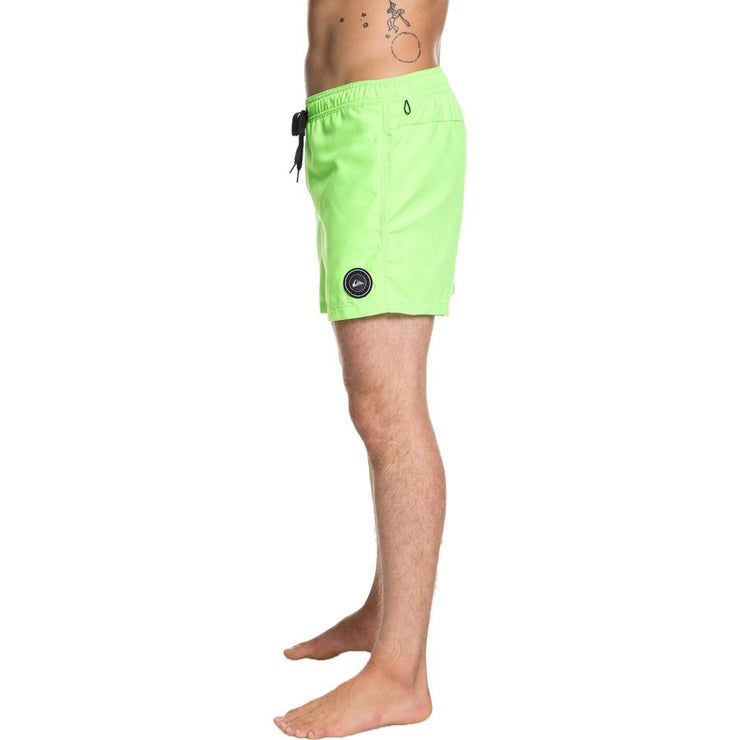 "Surf Shop, Surf Clothing, Quiksilver, Everyday 15"" Swim Shorts, Shorts, Green Gecko"