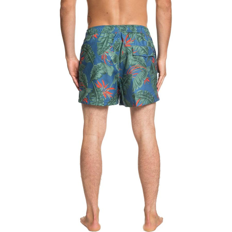 "Surf Shop, Surf Clothing, Quiksilver, Poolsider 15"" Swim Shorts, Shorts, Stellar"