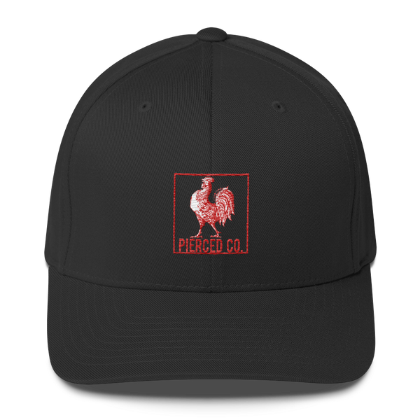 Pierced C*ck embroidered twill cap