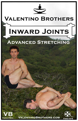 Inward Joints Advanced Level Video mp4 - VALENTINO BROTHERS