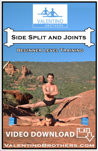 Side Split and Joints Beginner Level Video mp4 - VALENTINO BROTHERS