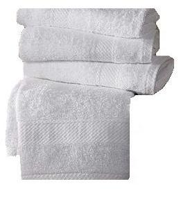 Salon Towels by Hampton®