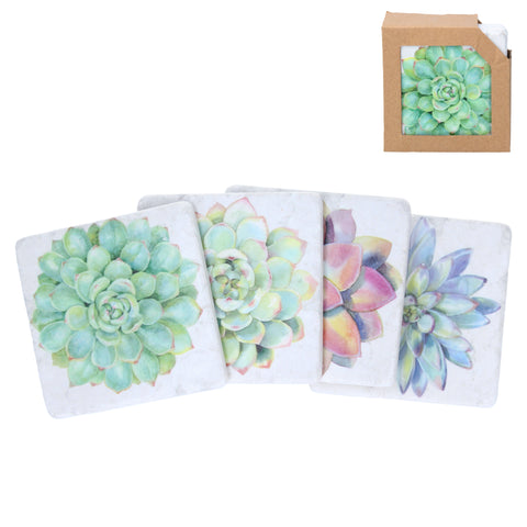 Coasters with Succulent Designs