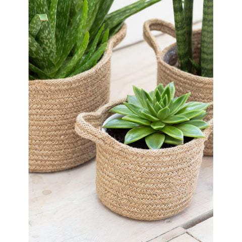 Seagrass Set of Three Baskets