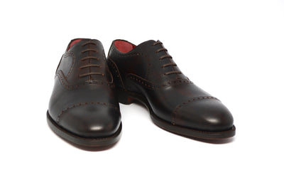 OUTLET - WILLIAM - MUSEUM BROWN - 371