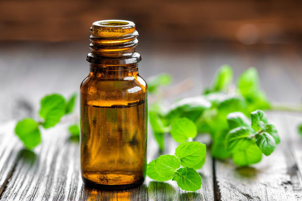 6 Great Oils, 15 Essential Uses: Making the Most of Your Essential Oils