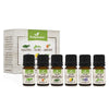 3 x 100% Pure All-Natural Essential Oil Starter Kit (18 Oils)