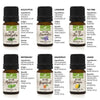 2 x 100% Pure All-Natural Essential Oil Starter Kit (12 Oils)