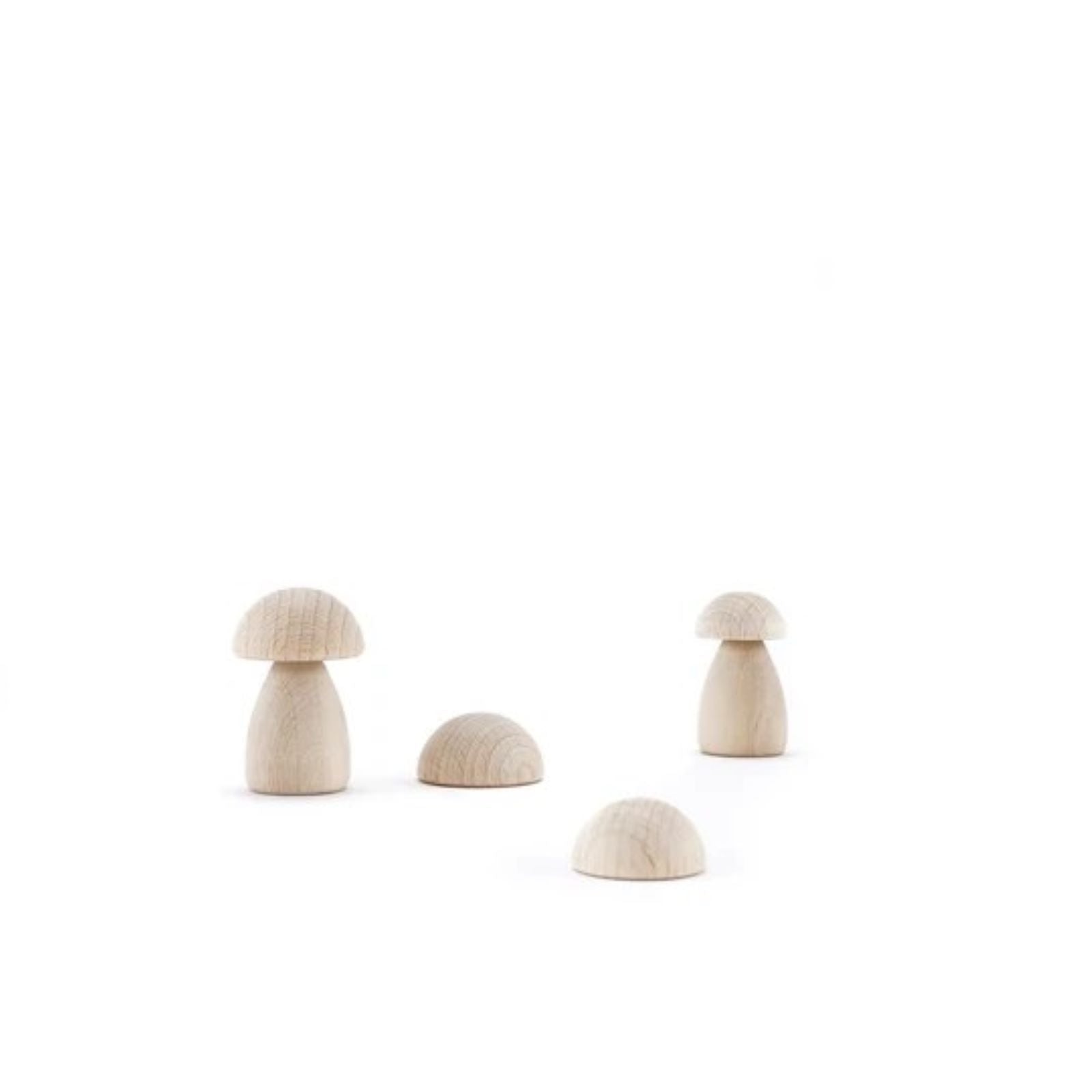 Clicques - DIY Mushrooms Wooden Set