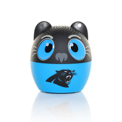 Bitty Boomers - Carolina Panthers