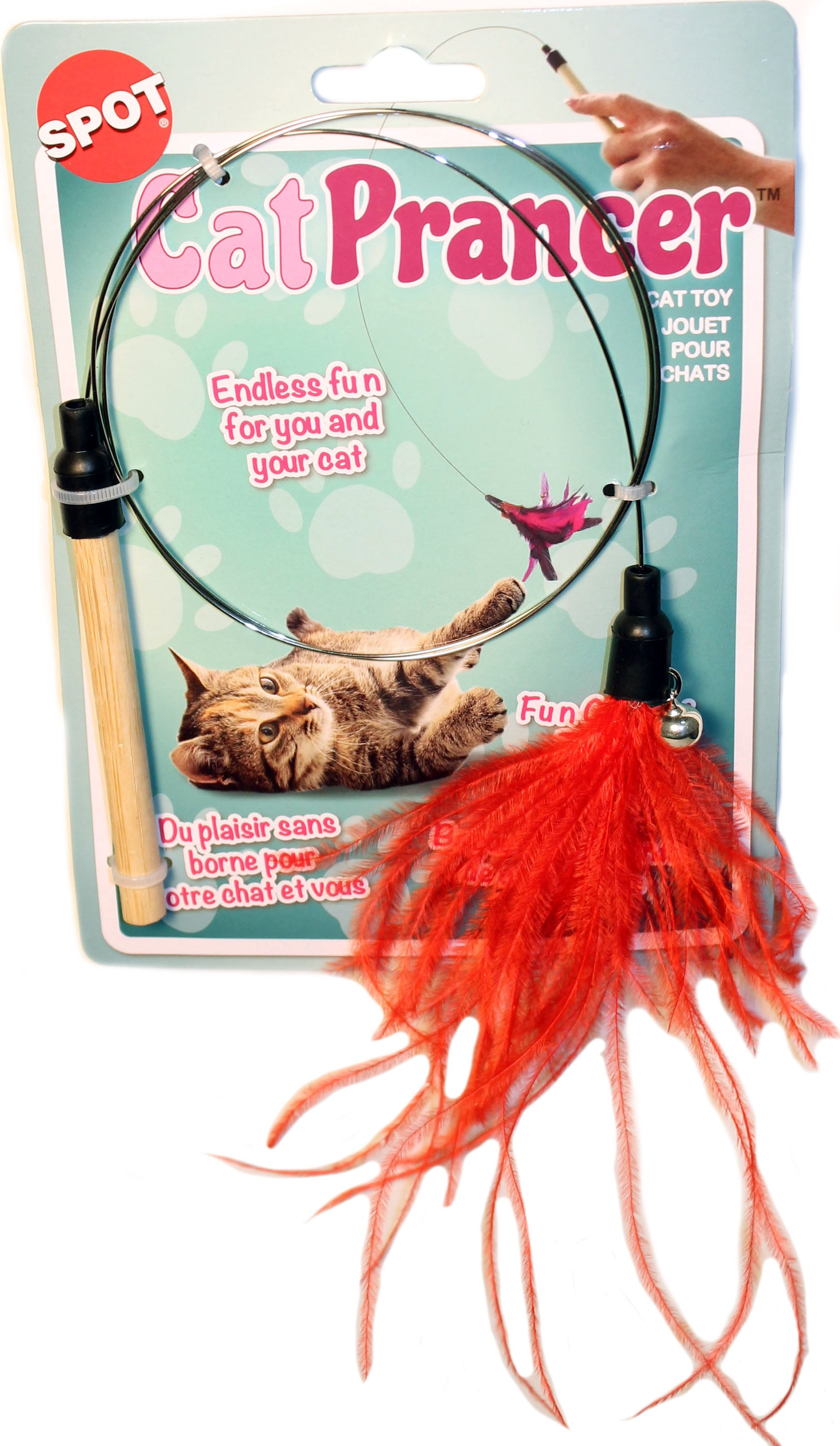 Cat Prancer Color Teaser Wand
