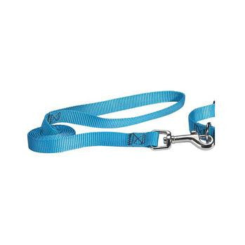 Nylon Brites Dog Leash - Blue