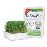 Gimborn Cat Grass Plus  (Twin Pack)