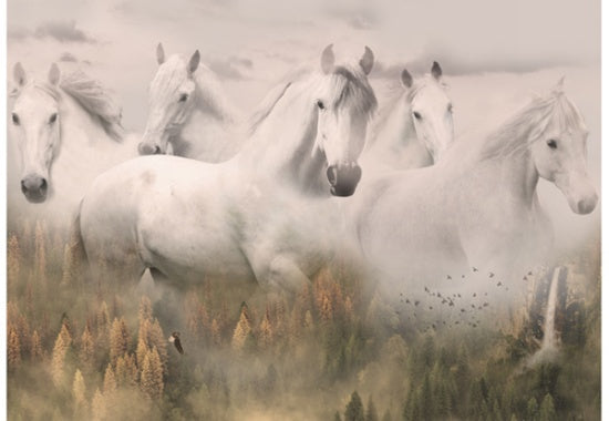 Hoffman Fabrics Call of the Wild White Spirit Horses Panel R4592-112-Dawn