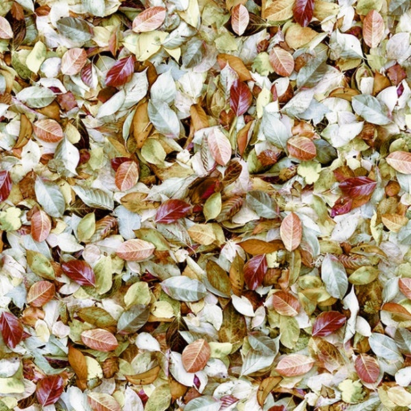 Hoffman Fabrics Call of the Wild August Leaves Cotton Fabric Q4542-593-August