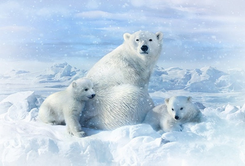 Hoffman Fabrics Call of the Wild Polar Bears Panel R4560-307-Snow