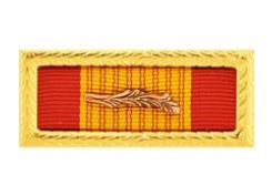 Air Force Viet Cross of Gall Ribbon