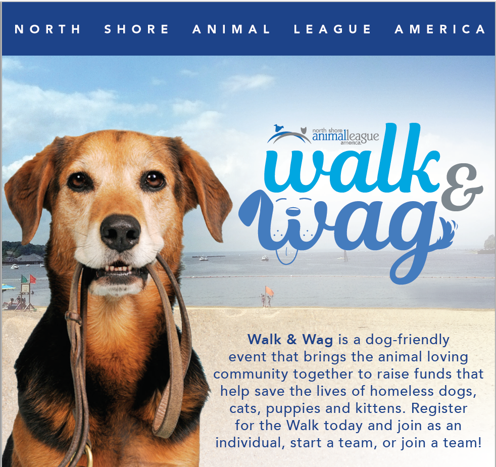 Walk & Wag with North Shore Animal League