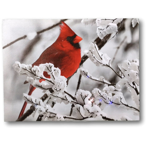 Cardinal Canvas Print - Red Cardinal on a Snowy Branch - LED Lighted Print with 40 Fiber Optic Lights in the Branches - Winter Scene Christmas Print