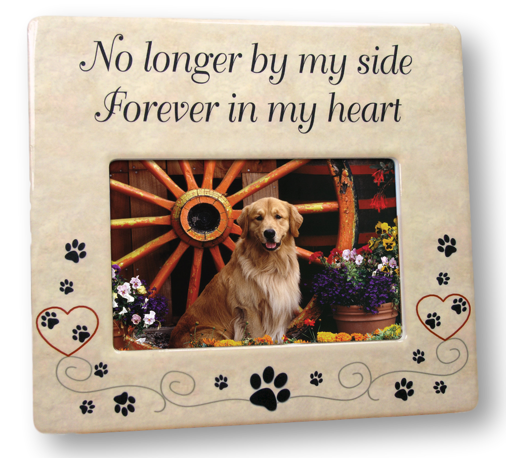 temperament shoes the best attitude new high No Longer By My Side Forever In My Heart - Pet Remembrance Frame ...