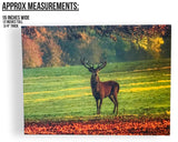 Deer Canvas Print - LED Lighted Picture with a Large Buck in a Field Meadow(2650)