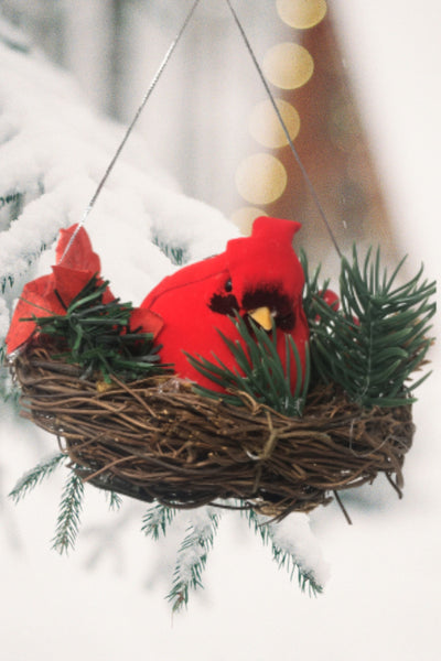 BANBERRY DESIGNS Red Cardinal Nest Christmas Ornaments - Set of 3 Bird's Nests Each One Has a Large Sitting Cardinal