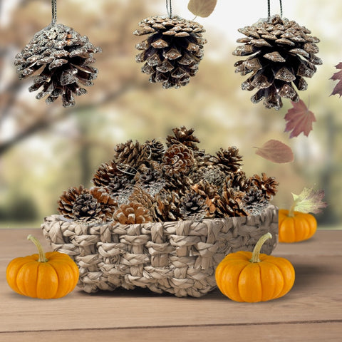 BANBERRY DESIGNS Pine Cone Ornaments Set of 40 (3496)