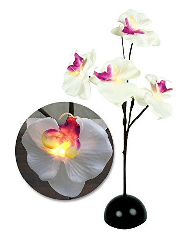 Orchid Plant - Lighted LED Orchid Flower Bouquet
