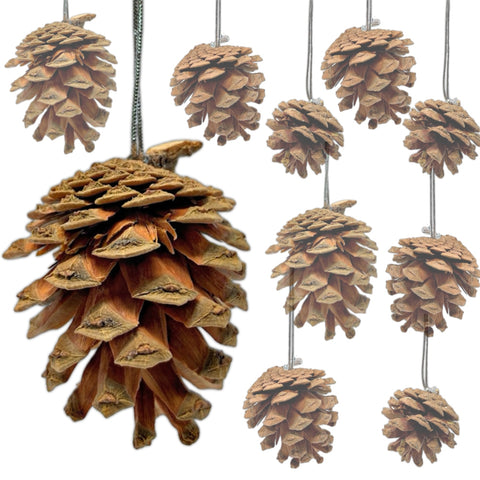 BANBERRY DESIGNS Natural Pine Cone Ornaments