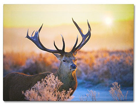 Buck Deer LED Lighted Canvas Print